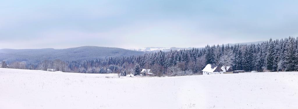 Pohled na lesy kolem Křižánek v zimě