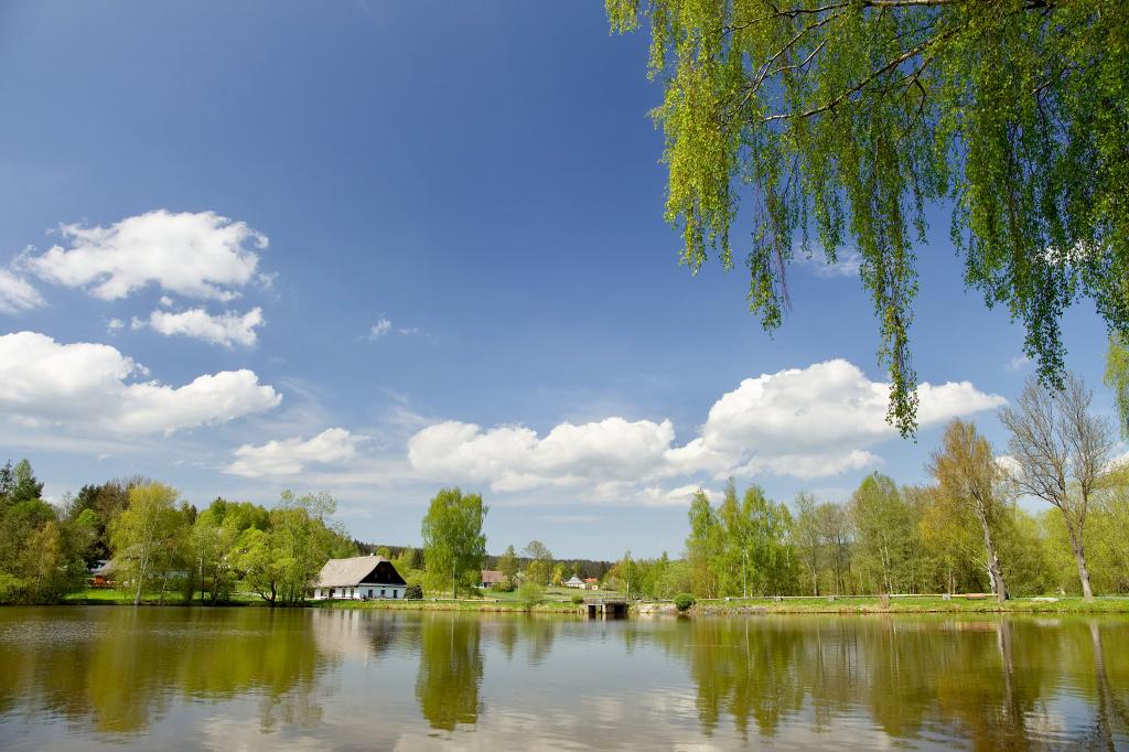 Kyšperský rybník, Křižánky