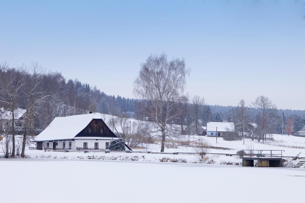 Kyšperský rybník v zimě