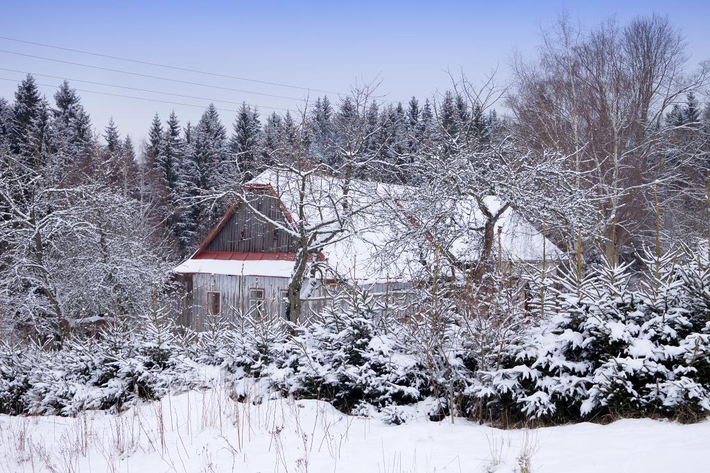 Zimní Křižánky
