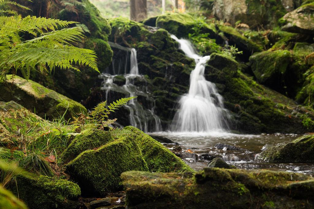 Tip na výlet – naučná stezka údolím Doubravy