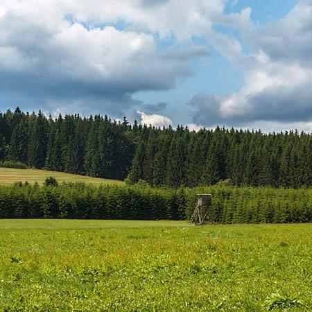 Posed, Moravské Křižánky