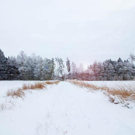 Zimní krajina v Železných horách