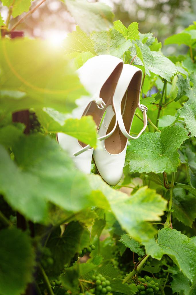 Nevěsty boty, vinná réva