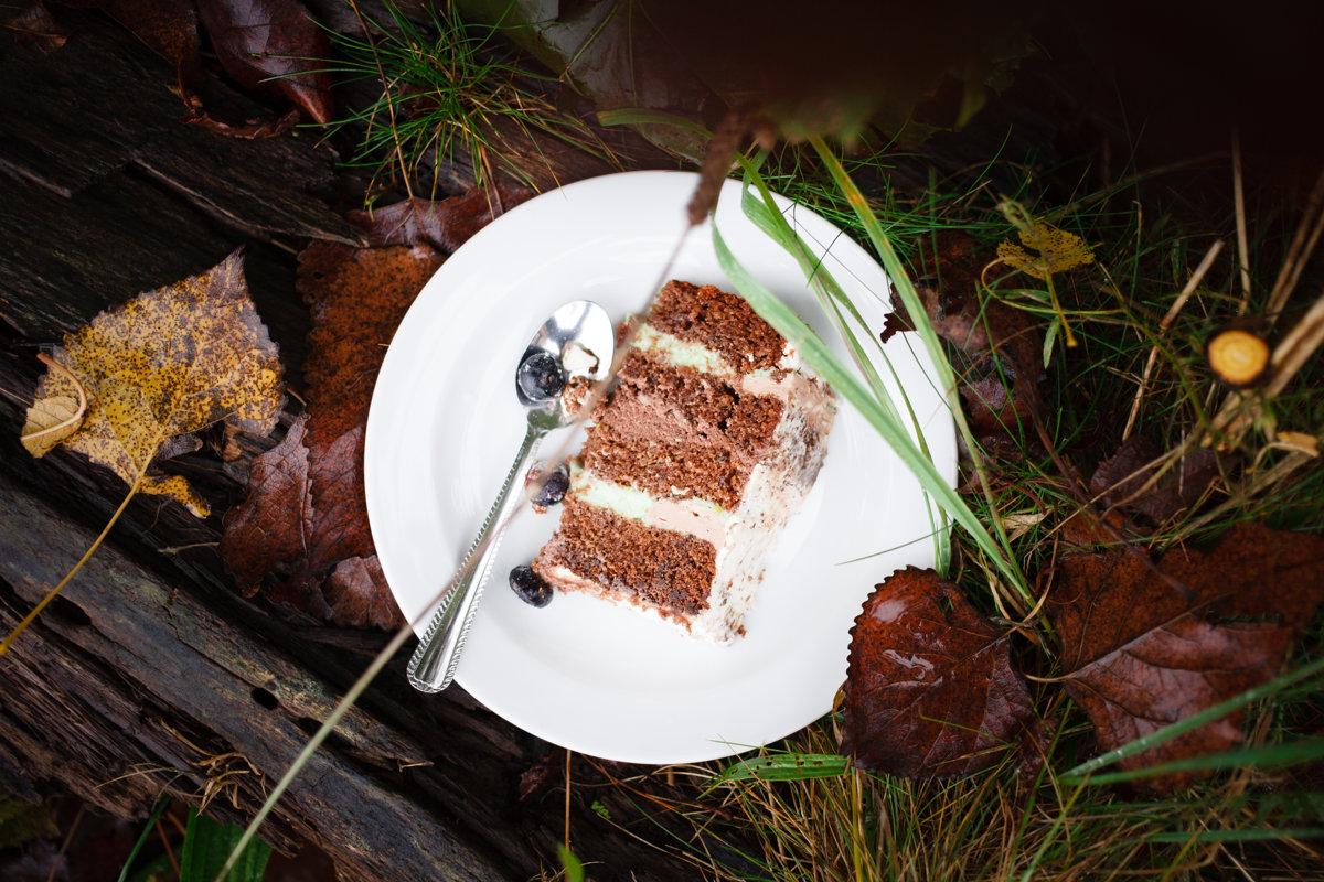 Chutný svatební dort na talíři v trávě