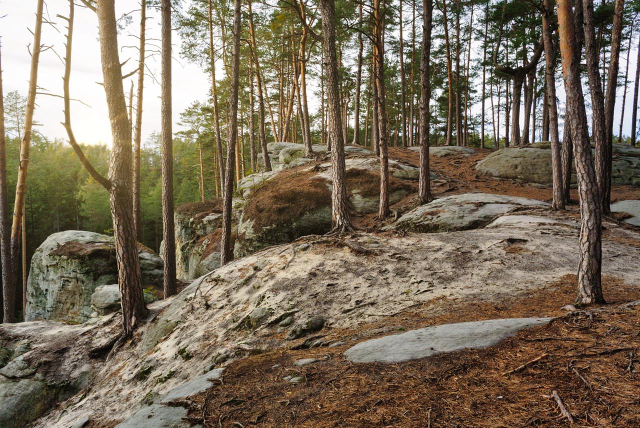 Na vrchu Hrnčířovy skály, Toulovcovy Maštale