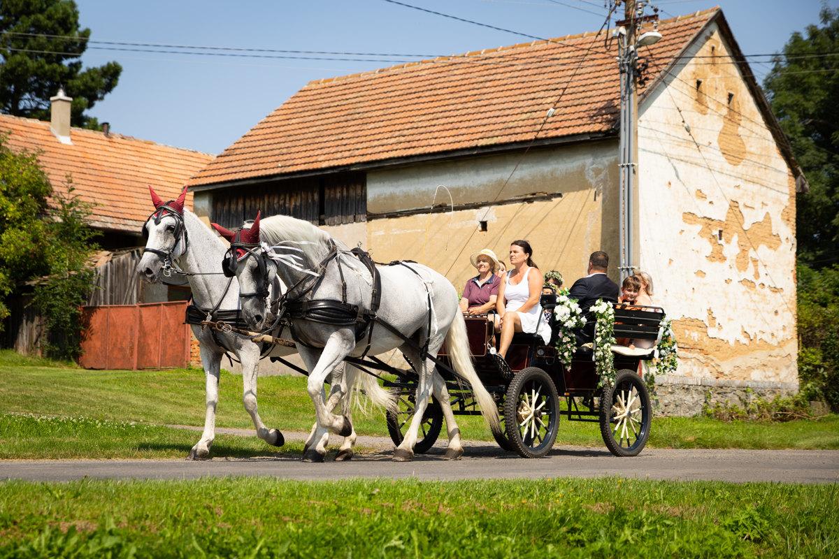 Nevěsta s rodiči jede kočárem na obřad, Horní Raškovice