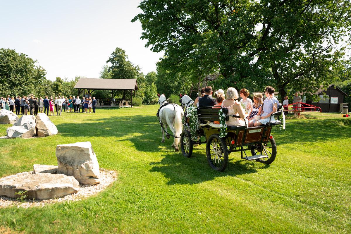 Nevěsta s rodiči přijíždí kočárem na obřad, Horní Raškovice