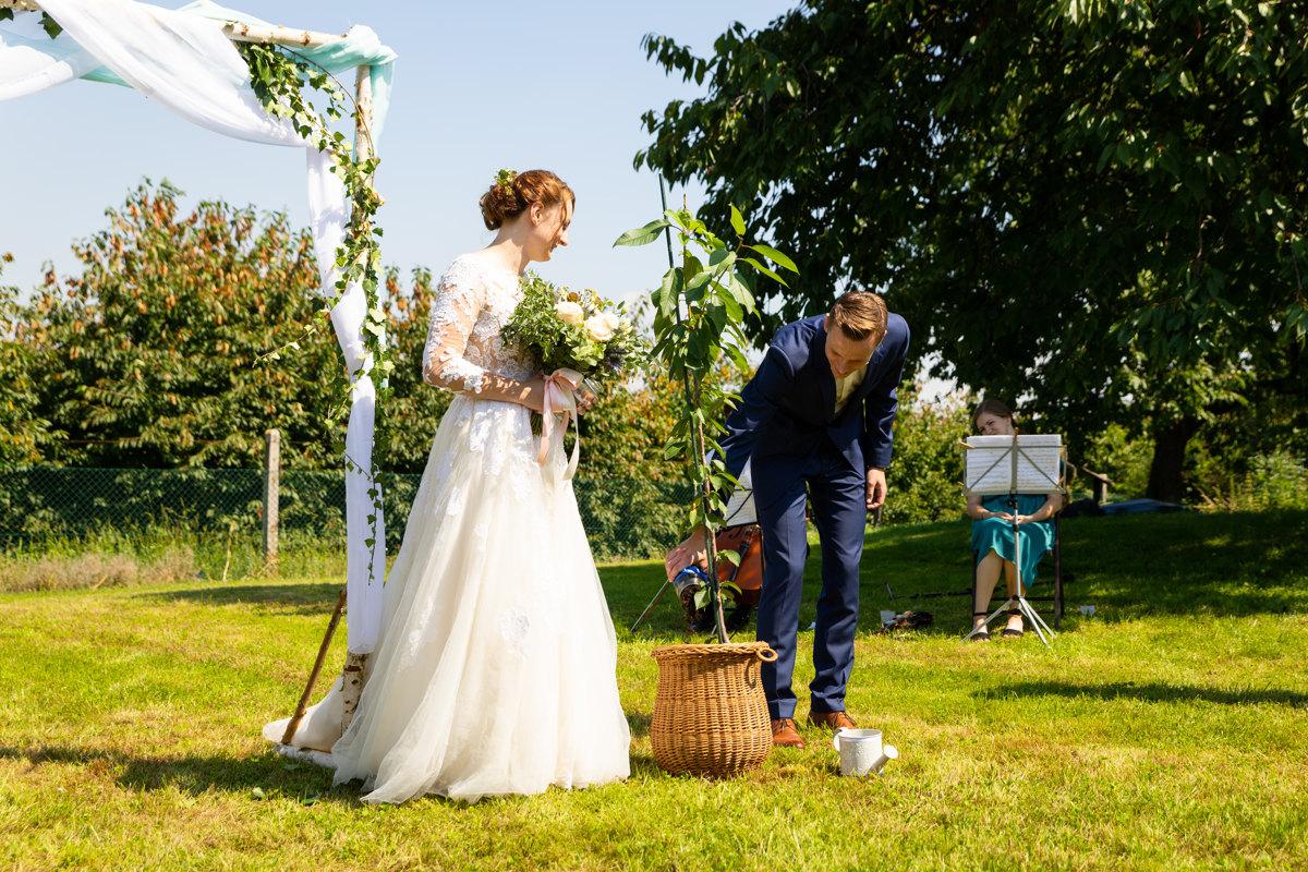 Symbolické zasazení stromu, svatba, obřad